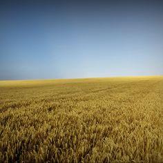Light Absorber by Alexandru Crisan, Photography, Digital Light Photography, Image Photography, Get Outside, Romania, Countryside, Artworks, Scenery, Landscape, Digital