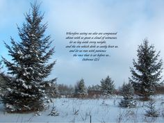 BIBLE STORIES ARE TRUE: DAILY SCRIPTURE(S) & PRAISE, 12/1/14, LET US RUN WITH PATIENCE THE RACE SET BEFORE US!