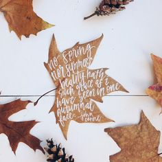 This would be such a cute decorating idea. Write on a leaf and then preserve it. Maybe just decorate them.