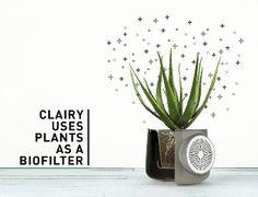 Clairy 令人驚豔的純天然空氣淨化器