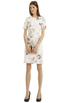 Rent Graphic Rose Sheath by Paul Smith for $70 only at Rent the Runway.