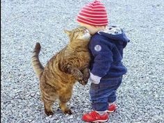 Cute Cats Names Female Cute Kittens Facts kitten loving snuggling a toddler child I Love Cats, Crazy Cats, Cute Cats, Funny Cats, Animals And Pets, Funny Animals, Cute Animals, Photo Chat, Cat Facts