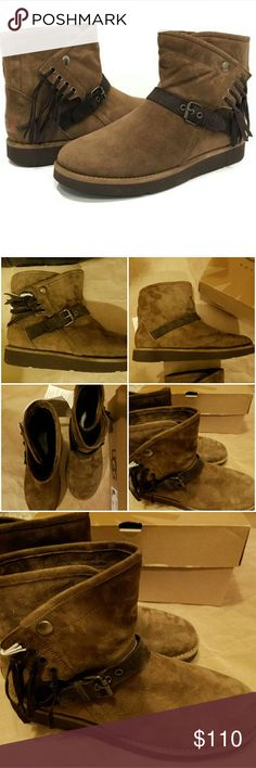 UGG BOOTS UGG Suede Boots size 7 brown - brown with dark brown belt -  new in box UGG Shoes