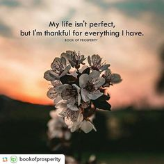 Positive Quotes : QUOTATION – Image : Quotes Of the day – Description My life isn't perfect but I'm thankful. Sharing is Power – Don't forget to share this quote ! Best Positive Quotes, All Quotes, Best Quotes, Life Quotes, Inspirational Quotes, Motivational, Famous Quotes, Gratitude Quotes, Learning Quotes