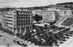 Alger-la Blanche Centre ville...1910