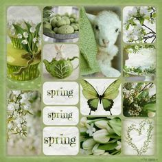 Photo by Marilyn Word Collage, Color Collage, I Need A Hobby, Beautiful Collage, Spring Blooms, Hello Spring, World Of Color, Diy Arts And Crafts, Spring Green