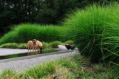 Grassgarden Villa Beekbergen by Bureau Poortvliet & Partners