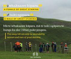 "At an Atua Matua wānanga in Kahungunu last month, this hill was one of the many that whānau climbed that day. This week, Mason brings us two kupu: ""whakaawe kāpara"" and ""taiki ngāpara"": a female or male of great stamina. Health And Wellbeing, Bring It On, Female, Maori"