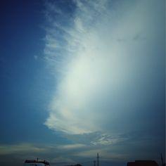 お魚のような、 雲でした。