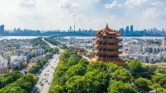 Chinese researchers reveal draft genome of virus implicated in Wuhan pneumonia outbreak Wuhan, Hangzhou, Shenzhen, University Of Sydney, Beijing China, Health Department, New Year Celebration, China Travel, Italy Travel