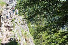 Depuis le col de la Schlucht, le sentier des roches commence en face du restaurant Le Relais des Roches. Il est signalé par un rectangle bleu.
