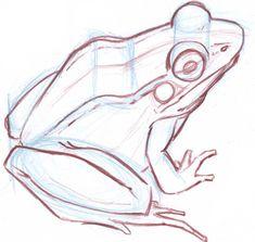 Animal Sketches, Animal Drawings, Cute Drawings, Drawing Sketches, Frog Sketch, Frog Drawing, Frog Tattoos, Frog Art, Cute Frogs