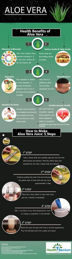 Aloe Vera health benefits + Juice recipe [Infographic] | ecogreenlove (scheduled via http://www.tailwindapp.com?utm_source=pinterest&utm_medium=twpin&utm_content=post13643182&utm_campaign=scheduler_attribution)