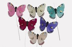 Feather Butterfly in Bright Spring Colors with Striking Designs 3 inch (12 pc)