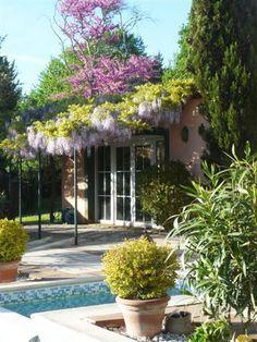 Quand l'Italie s'invite dans un jardin provençal - Ma maison, mon jardin - CôtéMaison.fr