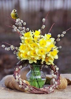 Cute Baby Pigs, Yellow Springs, Mellow Yellow, Ikebana, Daffodils, Artificial Flowers, Beautiful Landscapes, Happy Easter, Flower Arrangements