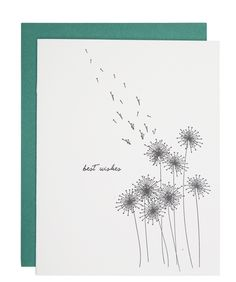 Dandelion Wishes card                                                                                                                                                                                 More