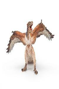 Archaeopteryx  $24.95