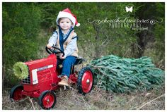 I borrowed this tractor from a friend at church. Used a small grove of pine trees behind the school where I teach as a location for Christmas sessions. Purchased a small tree from Walmart and cut the top of for the prop in this picture. Toddler Christmas Photos, Christmas Photo Props, Xmas Photos, Christmas Portraits, Family Christmas Pictures, Christmas Mini Sessions, Christmas Tree Farm, Holiday Pictures, Christmas Minis