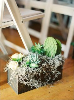 succulent and reindeer moss arrangement in reclaimed wood box