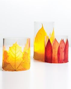 Flaming Foliage Candleholders  Give colorful fallen leaves one last chance to shine -- or glow -- by repurposing them as decorations on glass candleholders. Against the candlelight, the leaves look like vibrant flames.    Spray adhesive, by 3M  Assorted dried leaves  Glass candleholders  Candles  1. Apply spray adhesive to the backs of the leaves.  2. Wrap leaves around candleholder, letting the stem of each extend slightly past the base.  3. Cut off leaf overhang along bottom of candleholder.