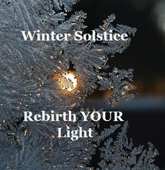 Thursday Thankful Thoughts ---Rebirth your Light w/the Winter Solstice!