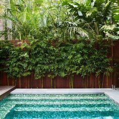 Small and Best Backyard pool landscaping ideas - Great Affordable Backyard ideas Backyard Pool Designs, Backyard Patio, Backyard Landscaping, Landscaping Ideas, Front Garden Landscape, Pool Landscape Design, Swimming Pool Landscaping, Swimming Pools, Jacuzzi