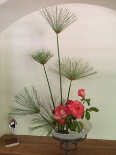 Upright / Papyrus, Garden roses