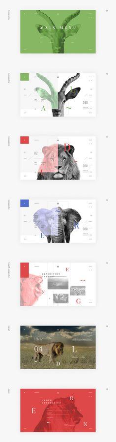 Namibia Animal Park Layout Design, Layout Web, Graphisches Design, Page Design, Book Design, Print Layout, Banner Design, Design Ideas, Web Design Trends