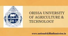 Orissa University of Agriculture and Technology-recruitment-97 vacancies-Scientist/Office Superintendent-cum Accountant/Various Vacancies-Apply Now-Last Date 24 January 2017 Job Details :  Post Name : Scientist No. of Vacancy : 62 Posts Pay Scale : Rs.15600-39100/- Grade Pay : Rs.6000/- Post Name : Office Superintendent-cum Accountant No. of Vacancy : 18 Posts Pay Scale : Rs. 9300-34800/- Grade Pay : Rs.4200/- Eligibility Criteria :  Educational Qualification :