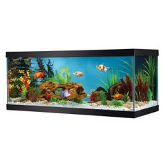 "Top Fin® 20 Gallon Glass Aquarium - PetSmart  12-1/2""L x 30-1/4""W x 13""H  $32.99"