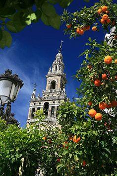 Aquí estamos contigo Sevilla, la giralda presume orgullosa al ver al Sevilla en el Sánchez-Pizjuan