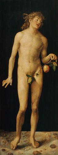 "Albrecht Dürer, ""Adam"", 1507. Oil on panel, 209 x 81 cm - Museo Nacional del Prado, Madrid."