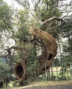 stickwork sculptures by patrick dougherty