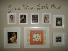 Grow Wise Little Owl, verbiage for wall Owl Themed Nursery, Owl Nursery, Beautiful Owl, Little Owl, Diy Network, Gallery Wall, Babies, Space, Home Decor