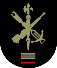 Academia de Mandos Legionarios