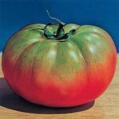 tomaten&webshop   Heirloomzaden.nl