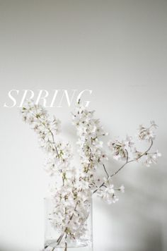 Spring (almost summer)