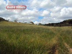 Fazenda - Pará De Minas - Mg 420 Ha