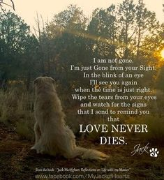 A dog telling their owner that love never dies that they are just gone from our sight, they are at heavens doggie door Dog Poems, Dog Quotes, Animal Quotes, Qoutes, I Love Dogs, Puppy Love, That's Love, Dog Passed Away, Motivational Quotes