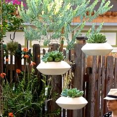 """Orbit Planter - 12""""Diameter x 5.5""""High $95 each w/ stainless steel 18"""" long wire for hanging - Make!"""