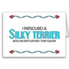 I Rescued a Silky Terrier (Male Dog) Greeting Card