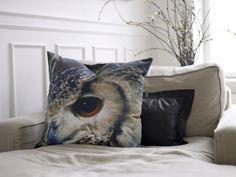{owl cushion}