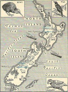 Antique Vintage NEW ZEALAND animals map original b/w map for framing. Vintage Maps, Vintage Travel Posters, Antique Maps, Maori Tattoos, Design Thinking, Map Of New Zealand, Zealand Tattoo, Vintage Flower Prints, Island Map
