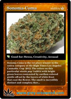 weed for sale, Buy Marijuana Online, Buy Weed Online, Cannabis Edibles. Text at 571 384 5933 Order at   www.grey-areaweed.com