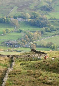 To Carpley Green - Wensleydale, Yorkshire Dales, England by Pixelda England Ireland, England And Scotland, Yorkshire England, Yorkshire Dales, North Yorkshire, British Countryside, British Isles, The Great Outdoors, Places To See