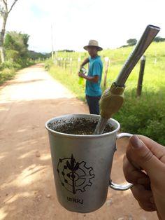 Planter Pots, Viajes, Meals, Life