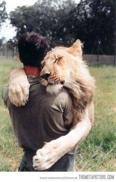 un'altro abbraccio prima di partire..