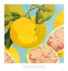fresh grapefruits- martha negley art healthy