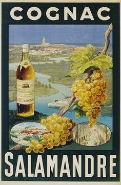 Cognac Salamandre Poster by